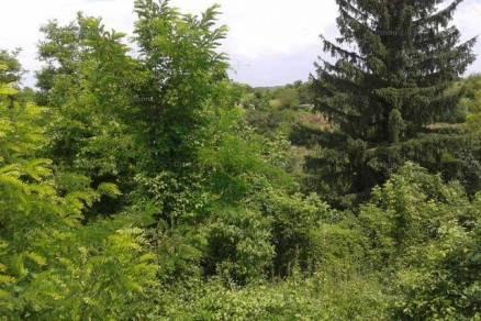 Kaposvári telek eladó a Fűzfa utcában, 60 négyzetméteres