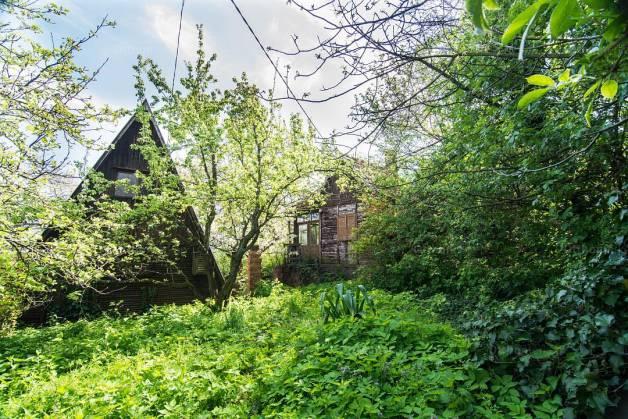 Szentendre 1 szobás lakóövezeti eladó a Szilfa utcában 2-ben