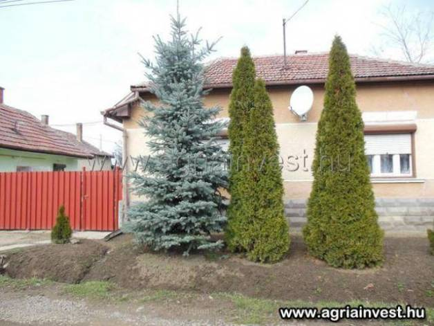 Feldebrő eladó családi ház