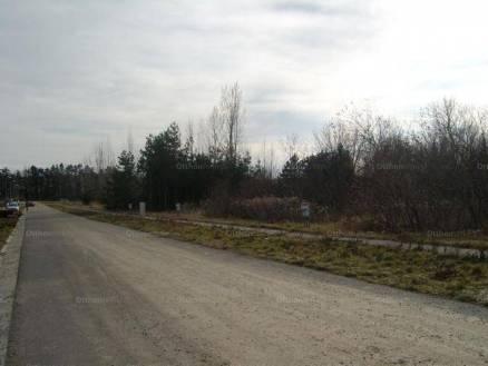 Eladó, Kaposvár