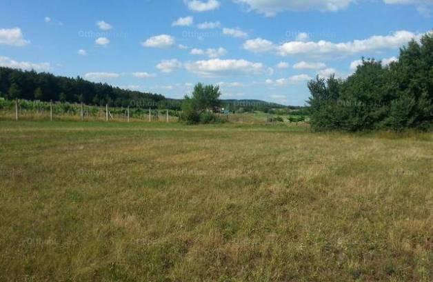 Balatonudvari eladó telek, 6084 négyzetméteres