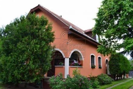 Tarnamérai eladó családi ház, 7 szobás, 250 négyzetméteres