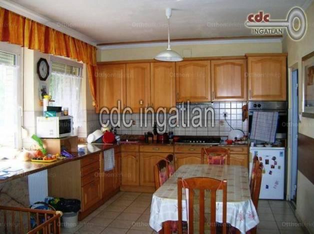 Dabas 2+2 szobás családi ház eladó