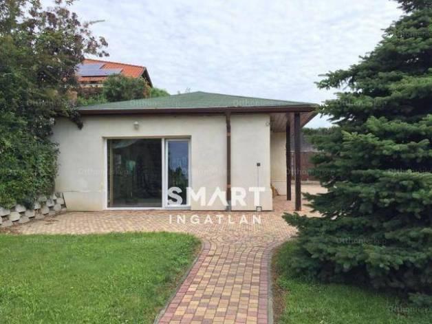 Eladó családi ház Pilisszentiván, Klapka utca, 4+11 szobás