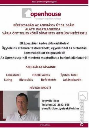Eladó, Gyula