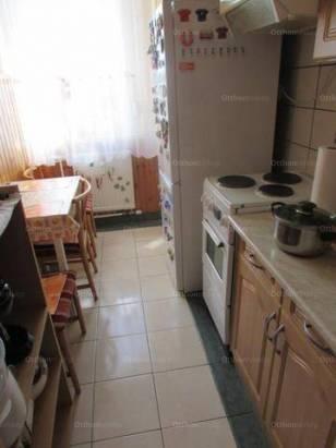 Debrecen 1+1 szobás lakás kiadó az István úton