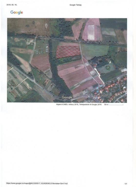Kalocsai eladó telek, 6050 négyzetméteres