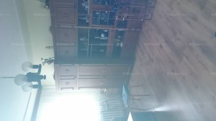 Kiskunfélegyháza, Dr. Holló Lajos utca