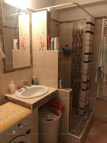Dunakeszi 1+1 szobás lakás eladó