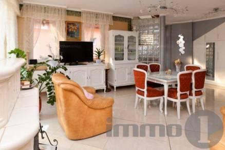 Dunaföldvári eladó családi ház, 4+1 szobás, 161 négyzetméteres