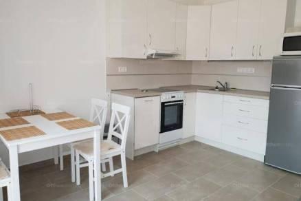 Pécsi új építésű lakás kiadó, 51 négyzetméteres, 1 szobás
