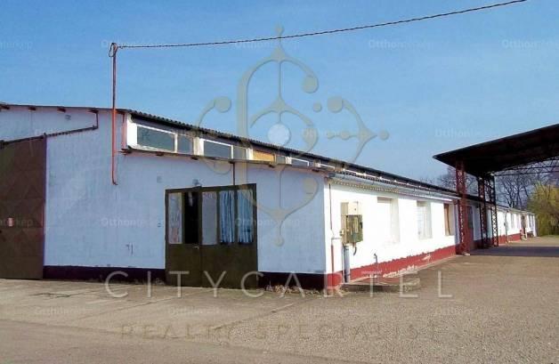 Dunaföldvári eladó telek, 2000 négyzetméteres