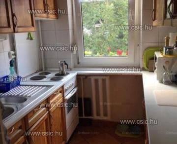 Budapesti lakás kiadó, 53 négyzetméteres, 1+2 szobás