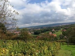 Telek eladó Zalaegerszeg - Akácfa sor, 2777 négyzetméteres
