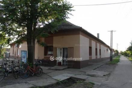 Tiszaszőlősi családi ház eladó, 392 négyzetméteres