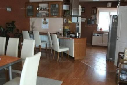 Kaposvári családi ház eladó, 970 négyzetméteres, 5 szobás