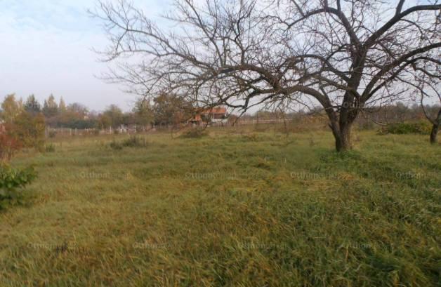 Szolnoki eladó telek, 1000 négyzetméteres