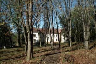 Komló 54 szobás családi ház eladó