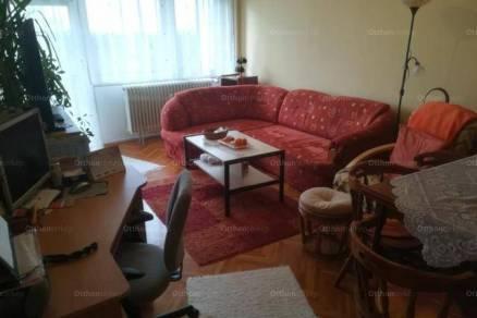 Székesfehérvár 2 szobás lakás kiadó