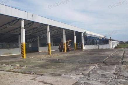 Bajai telek eladó, 88137 négyzetméteres