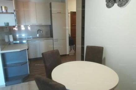 Székesfehérvári kiadó lakás, 1 szobás, 43 négyzetméteres