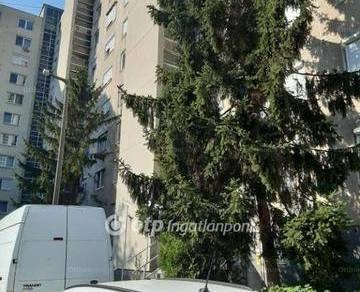 Miskolci eladó lakás, 2 szobás, 55 négyzetméteres