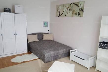 Pécsi lakás kiadó a Szigeti úton, 36 négyzetméteres