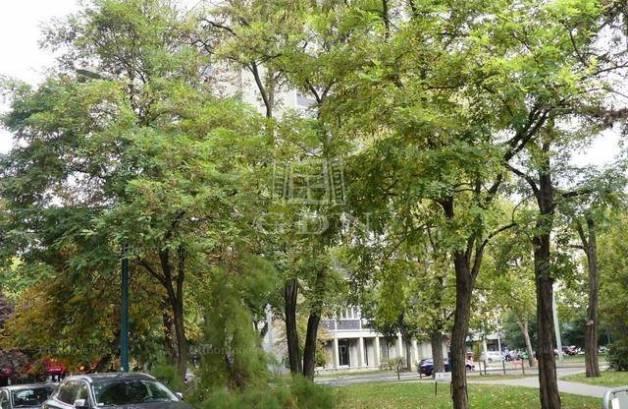 Budapest, XIV. kerület Ond vezér útja
