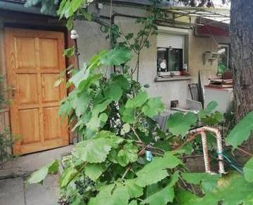 Kiadó családi ház, Pécs, 1 szobás