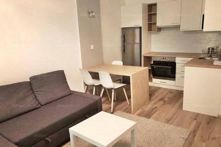 Szeged 2 szobás lakás kiadó