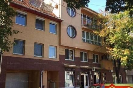 Szeged kiadó lakás a Béke utcában
