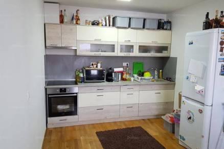 Kecskeméti kiadó lakás, 1 szobás, 65 négyzetméteres