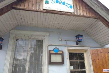 Tiszaföldvár eladó családi ház