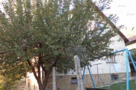 Budakeszi 5+1 szobás családi ház eladó
