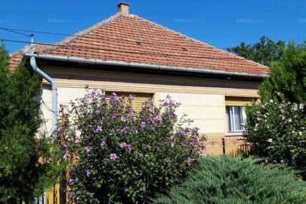 Csányi eladó családi ház, 2+1 szobás, 110 négyzetméteres