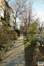Budapest, XI. kerület Bártfai utca
